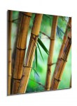 Bamboo forest background (2/2)