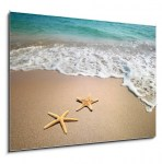 two starfish on a beach (2/2)