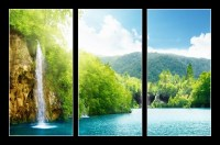 waterfall in deep forest (1/2)